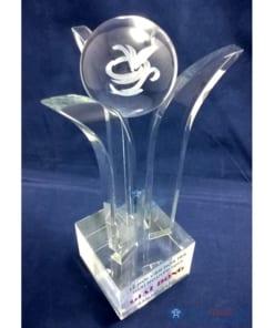 Cup pha le 3D le hoi tra thai nguyen 247x296 - Cúp Pha Lê Búp Trà 3D Lễ Hội Văn Hóa Trà Thái Nguyên 2015