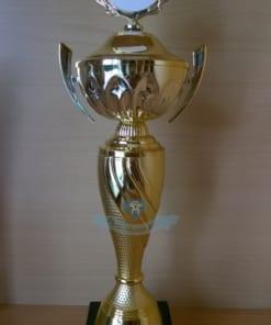 Cup pha le giai vo dich 1 247x296 - Cúp Vô Địch Game TV