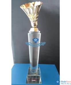 CUP PHA LE THE THAO CAU LONG