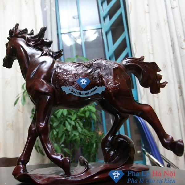 NGUA PHONG THUY MA DAO THANH CONG 1