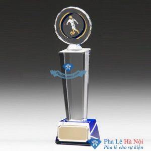CUP PHA LE THE THAO HOA MAT TROI