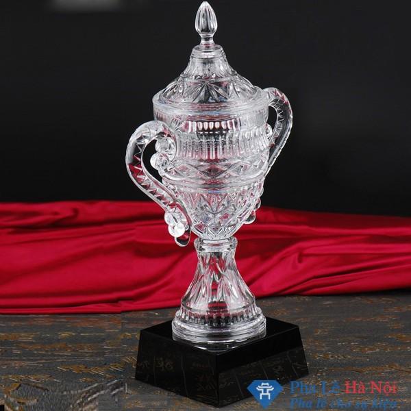Cúp pha lê vô địch 2