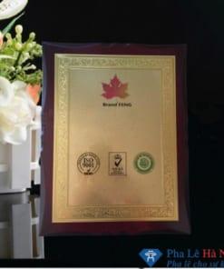 Kỷ niệm chương gỗ đồng 1