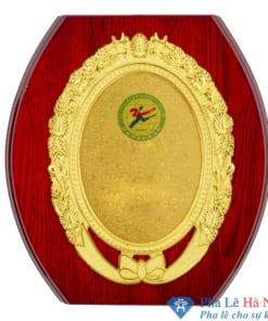 Kỷ niệm chương gỗ đồng 13