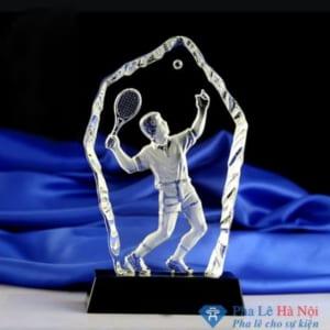 kỷ niệm chương pha lê 4.4 300x300 - Vì sao nên chọn kỷ niệm chương pha lê làm quà tặng