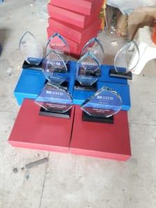 69566a56f00c13524a1d 225x300 - ngày 29/11 cung cấp cho ngân hàng SHB chi nhánh Thái Bình 30 Kỷ niệm chương lá