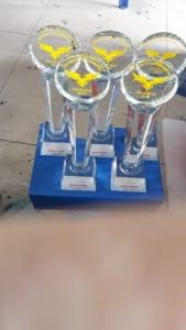 c2e4913aaf474d191456 2 169x300 - Cup Hội Nghị Doanh Nhân 30 cup hoa mặt trời, ngày 20/02/2019