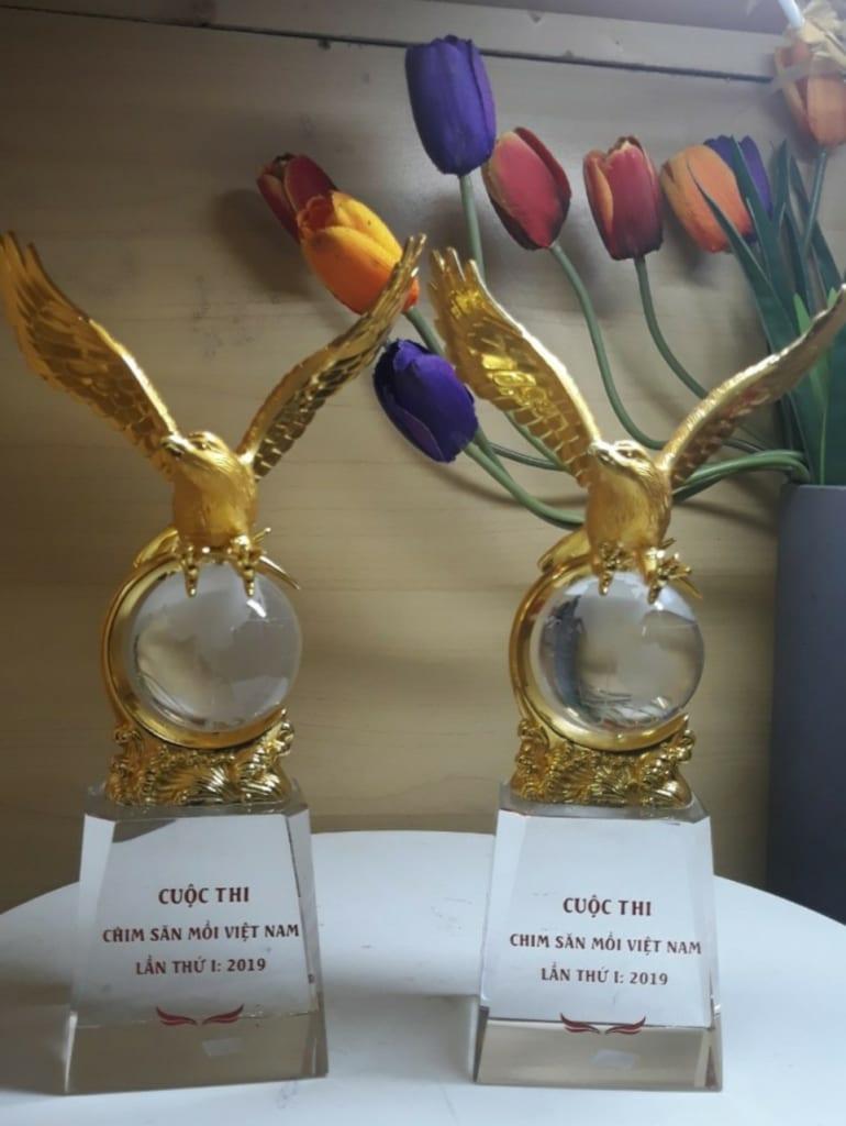 d2f17d294e57a909f046 770x1024 - Cúp đại bàng mạ vàng nano 24k cao  cấp, cung cấp cho cuộc thi chim săn mồi , Số lượng 30 chiếc ngày 20/08/2019