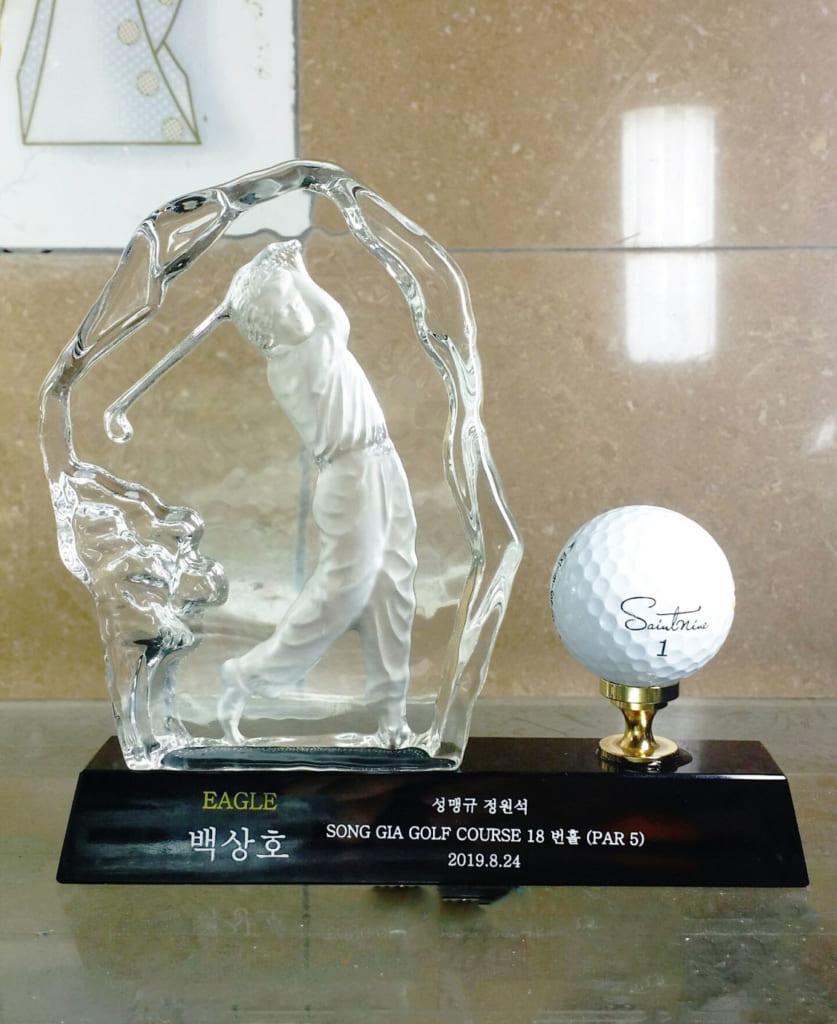 Hình ảnh cup golf